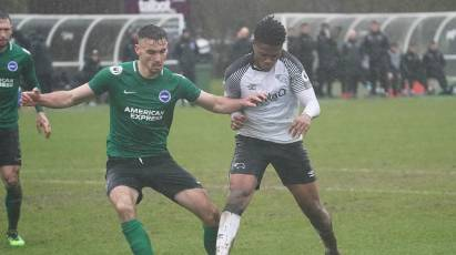 U23s suffer home defeat to Brighton & Hove Albion